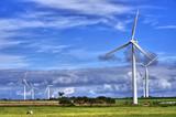 GREEN WORLD GROUP предлага  проекти за вятърни генератори-Консултантски