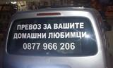 Зоо транспорт-Услуги