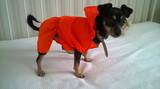 Дрехи за кучета - дъждобран-Аксесоари