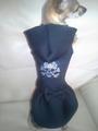 Дрехи за кучета - рокля-Аксесоари