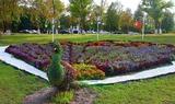 Вертикално, хоризонтално и покривно озеленяване от Лилия-Озеленяване