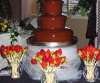 Шоколадов фонтан под наем от НОВА Кетъринг за всяко събитие!-Други