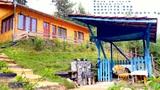 Вила за гости Горски кът - град Сърница, язовир Доспат-На планина
