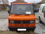Mercedes-Benz 210 D – Град Сърница, област Пазарджик-Камиони