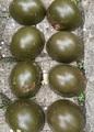 Продавам български БНА бойни каски М72 - 8 броя - 50 лв.-Колекции
