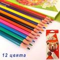 Цветни моливи за оцветяване и рисуване 12 цвята-Други